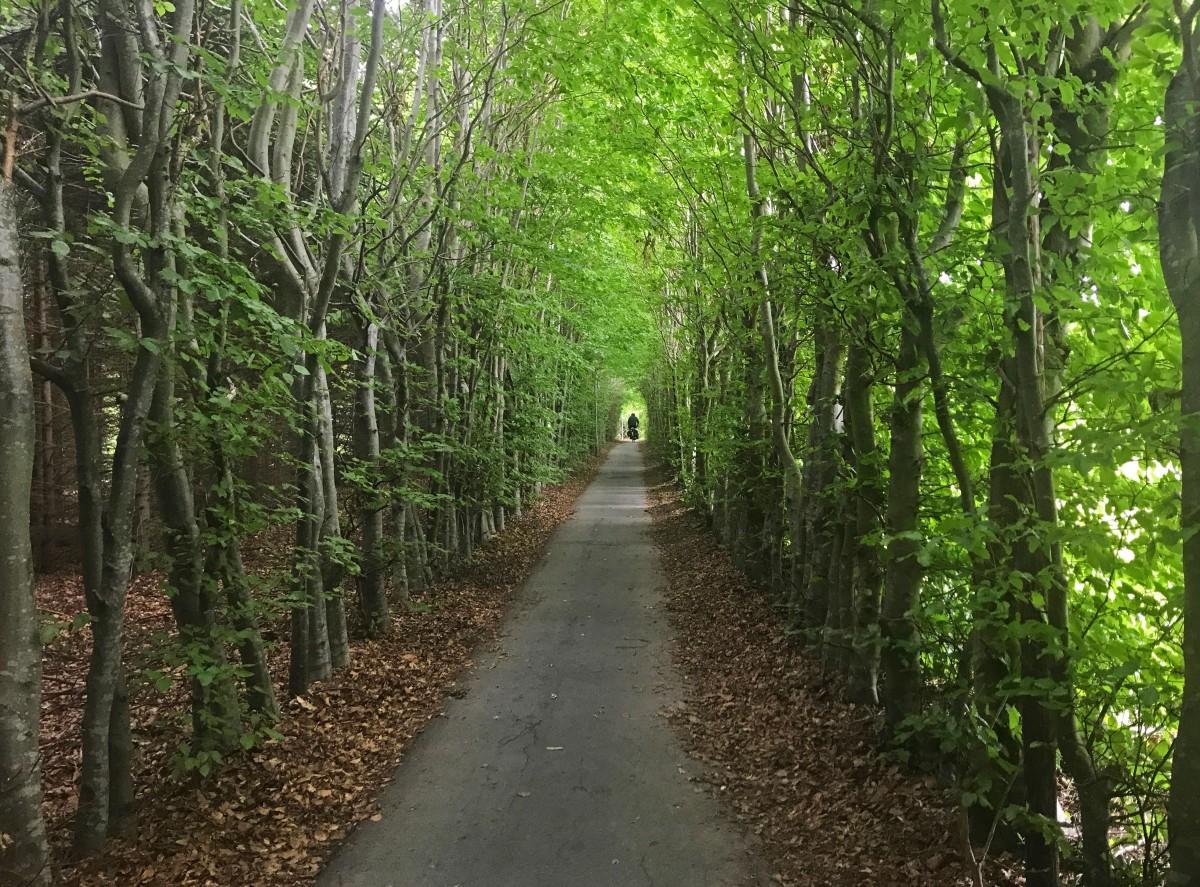 Elva danska öar på cykel